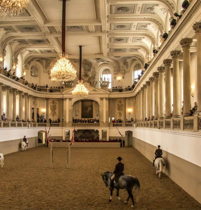 Ecole Espagnole Equitation