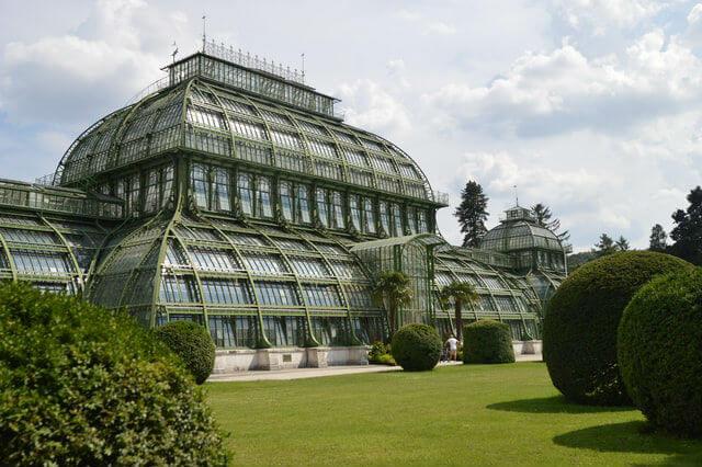 Serre aux palmiers Schönbrunn